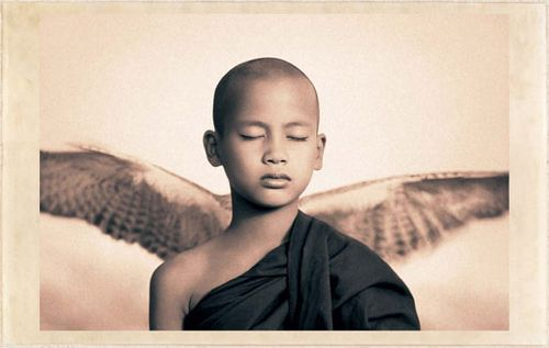 Vision gregory colbert ashes and snow